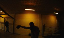 Does Shadow Boxing Benefit Fat Loss