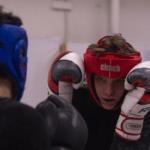 7 Best Boxing Gloves for Sparring