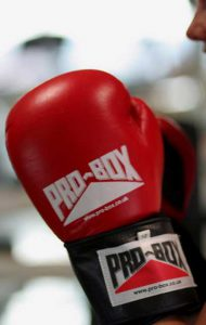 how to determine the price for boxing gloves