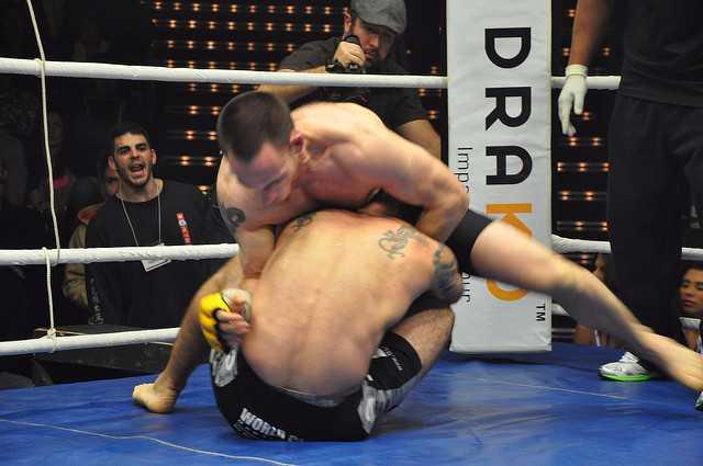 Are MMA shorts worth it