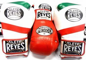 good boxing equipment company overview