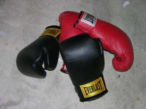 Should you Buy Vinyl or Leather Boxing Gloves?