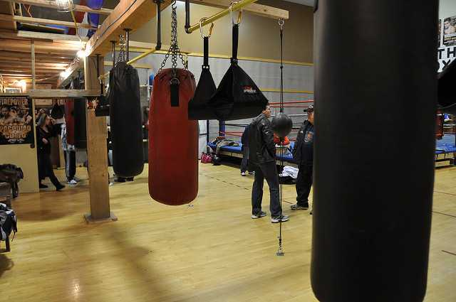 all types of punching bags