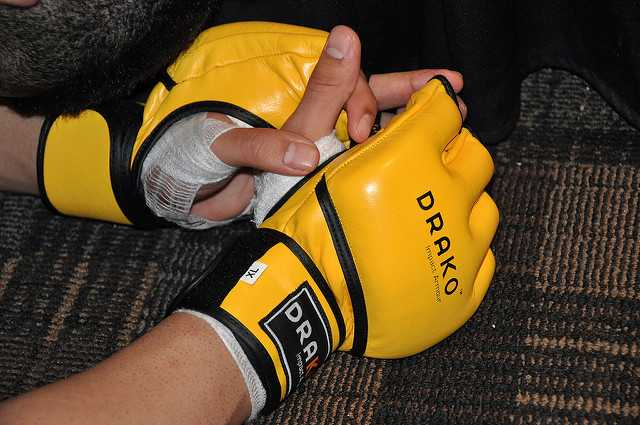 MMA gloves with really cool design
