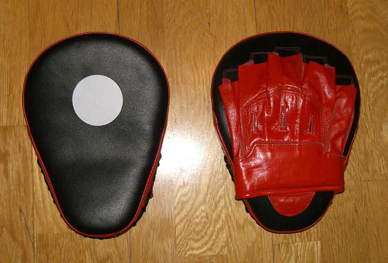 punch mitts buyer guide