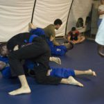 Ring to Cage Grappling Dummy Reviews (My Take!)